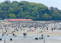 潮干狩り:三河湾沿岸