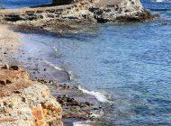 佐久島の海岸