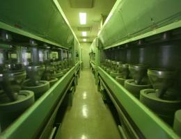 お抹茶工場見学(呈茶付)