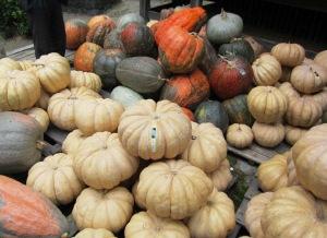 全国のかぼちゃ大集合!かぼちゃサミット
