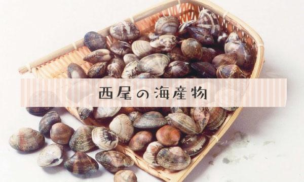 西尾の海産物