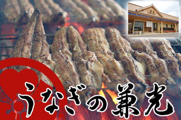 【三河一色ブランド】特上炭火手焼き うなぎ白焼き(中サイズ) タレ・山椒付き