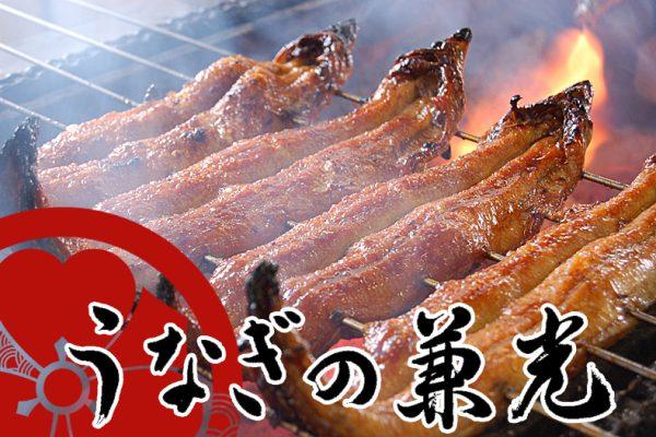 【愛知県三河一色産】特上炭火手焼き うなぎ蒲焼き(中サイズ) タレ・山椒付き