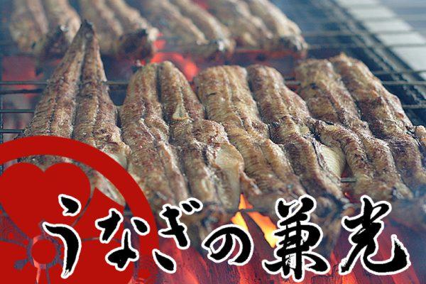 【愛知県三河一色産】特上炭火手焼き うなぎ白焼き(中サイズ) タレ・山椒付き