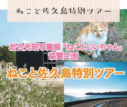ねこと佐久島特別ツアー