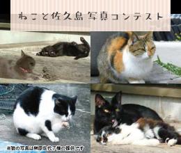 ねこと佐久島写真コンテスト