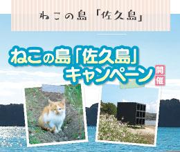 ねこの島佐久島