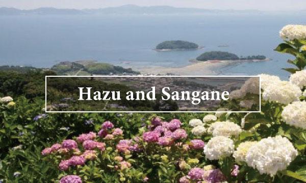 Hazu Sangane