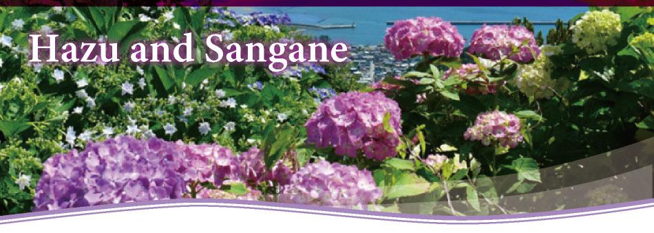 Hazu and Sangane