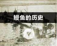 Unagi's history